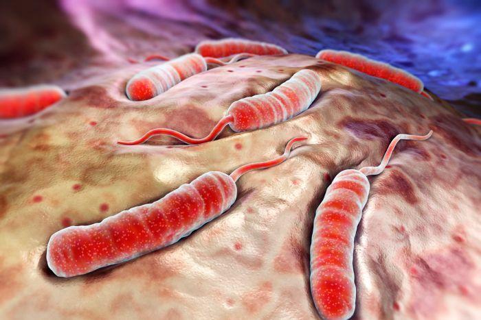 Koleradan Korunma Yolları Nelerdir